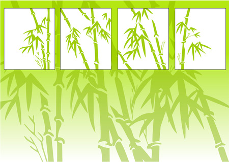 bamboo background Stock Vector - 3947833