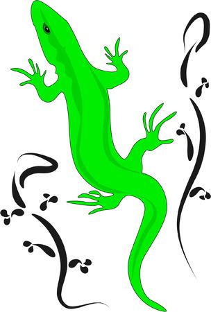surf vector: lizards