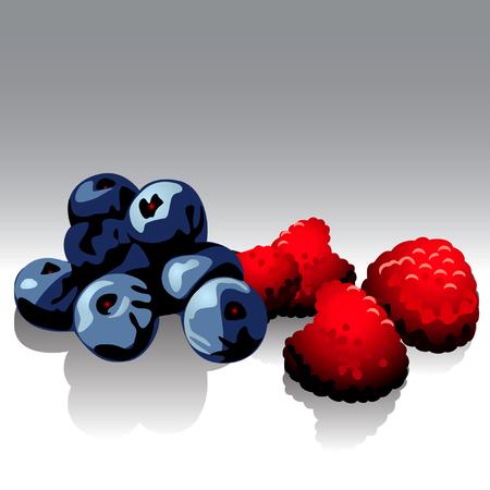 bilberries: raspberries & bilberries