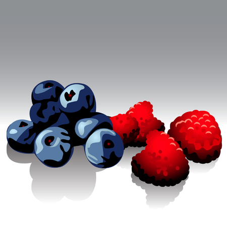 raspberries & bilberries
