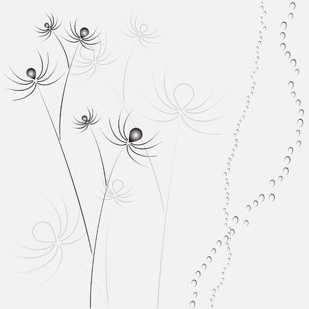 spider flower Vector