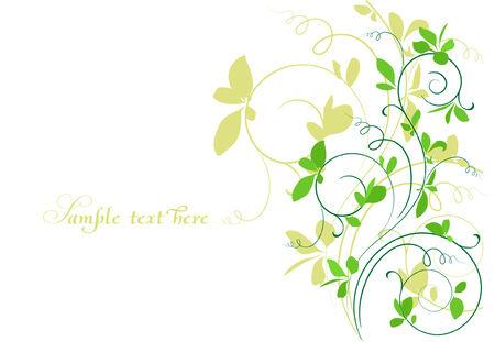spring branch Illustration
