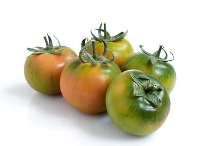 Five tomatoes isolated over a white background photo