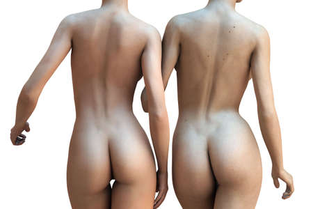 nude ass: Two sexy naked women isolated over a white background (3D render) Stock Photo
