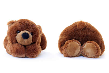 Teddy bear isolated over a white background. Front and rear view. photo