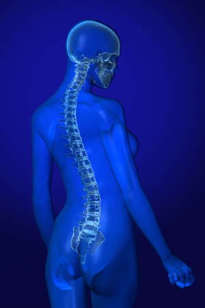 X-ray female anatomy over a blue background