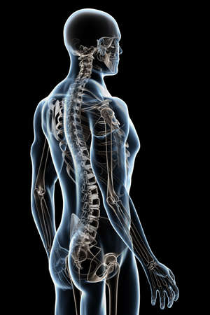 X-ray male anatomy over a black background Stock Photo