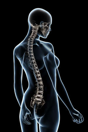 X-ray female anatomy over a black background photo