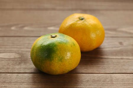 mandarin satsuma orange on wood table
