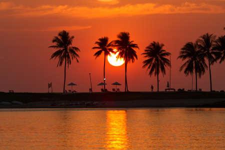 playas tropicales: puesta de sol playa con palmeras al lado de la laguna.