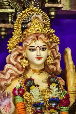 Maa Saraswati Spreading The Happiness With Beautiful Appearance.
