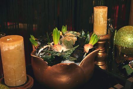 still-life with plants photo