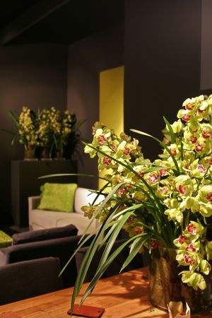 green elements in interior with green orchids on table