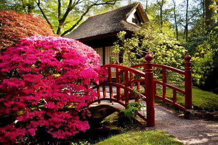 asian house plants: Japanese tea-house in spring park Stock Photo