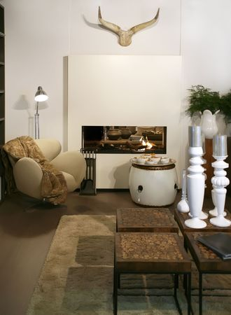 living room with fair-place and home decoration Stock Photo - 3754678