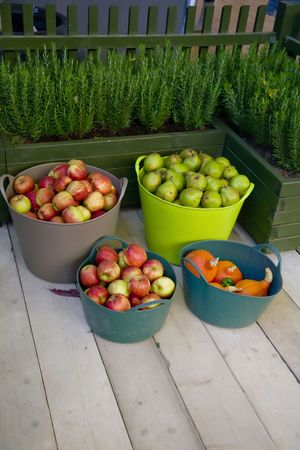 basket with apples on wooden autumn terrace  photo