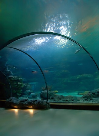 interior of public aquarium photo