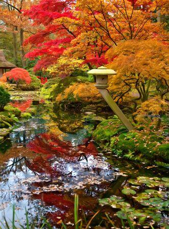 ponte giapponese: Parco giapponese da tempo autunnale stagionale Archivio Fotografico