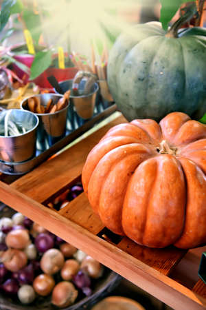 home garden harvest by autumn at home photo