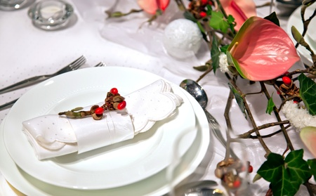 winter decoration on party table in gentle colors Stock Photo - 11276728