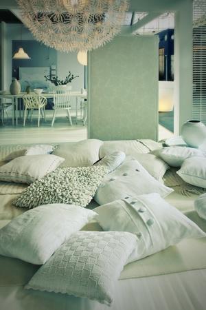 Wohnlandschaft mit Kissen im Wohnzimmer Standard-Bild - 12851558