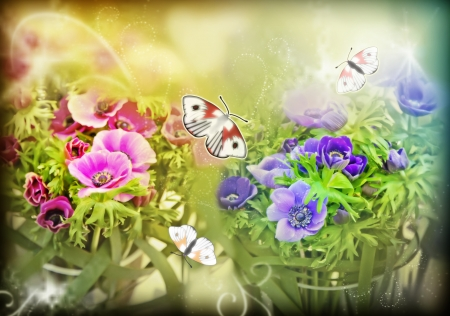 decorative spring background of flowers photo