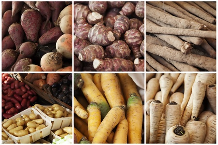 collage from different roots vegetables photo