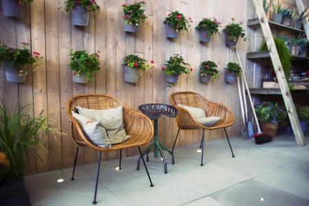 Saisonale grünen Platz im Haus Standard-Bild - 15688972