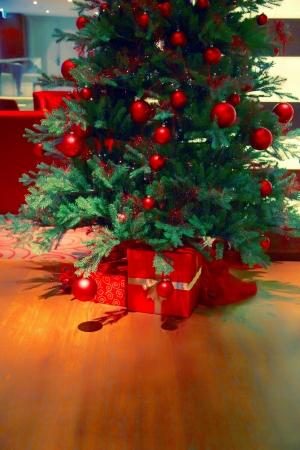 Christmas tree on floor and gift boxs Stock Photo - 16268011