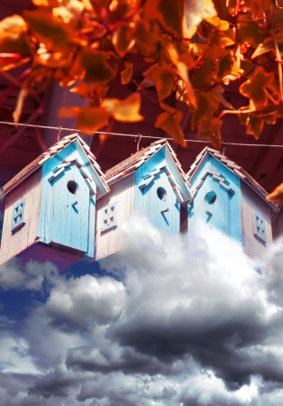 countrylife: seasonal image of autumn bird houses
