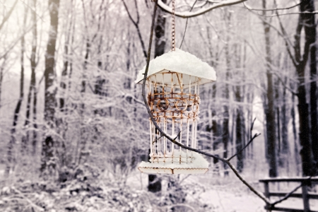 winter bird house in snow forest  photo