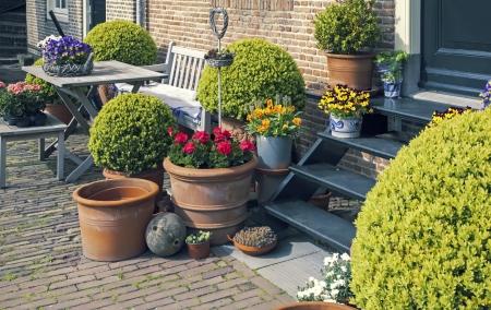 家の庭で装飾的な植木鉢