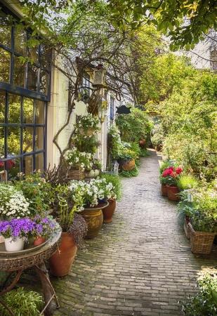 summer flower street in small town
