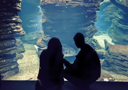 oceanarium: silhouette of people in big oceanarium  Stock Photo