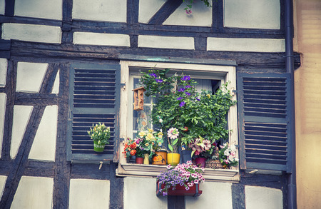 flower boxes: background of france summer window with flowers