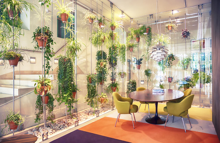 interior with flowers decoration in hall of modern house