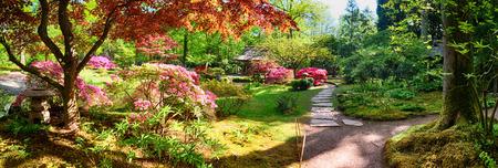 natuur achtergrond panorama in het Japans park