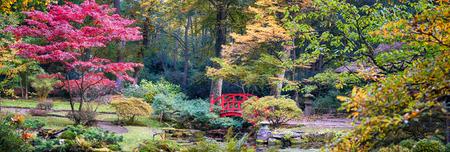 panorama: autumn panorama in Japanese park