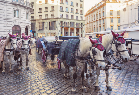 horse carriages in the center of Vienna, winter