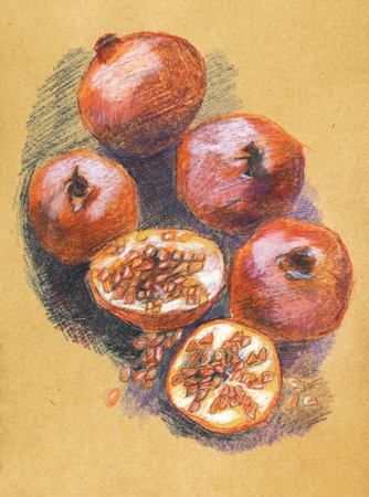 colour pencil: pomegranates on table,  pencils original drawing on recycle paper Stock Photo
