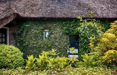 dutch: antique yard and green facade in old dutch village