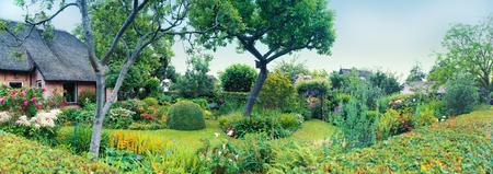 garden flower: summer panorama of  dutch house and garden , Giethoorn