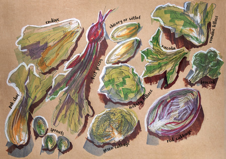 sketch drawing: different food components, ink, markers and pencils original drawing on craft paper