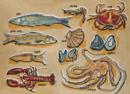grass carp: different food components, ink, markers and pencils original drawing on craft paper