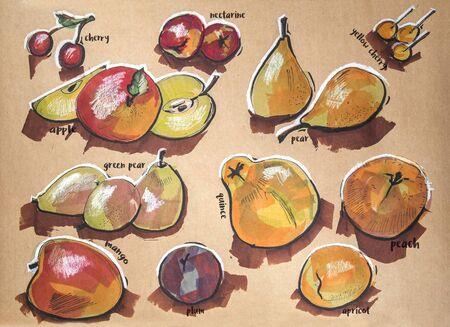 membrillo: diferentes componentes de los alimentos, tinta, marcadores y lápices de dibujo original en papel del arte Foto de archivo
