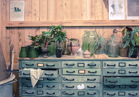 plant in pot: veranda with botanical table in garden place Stock Photo