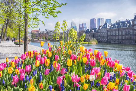 the hague: historical center of  the Hague city, spring