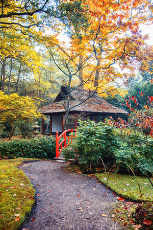 autumn in Japanese park, the Netherlands