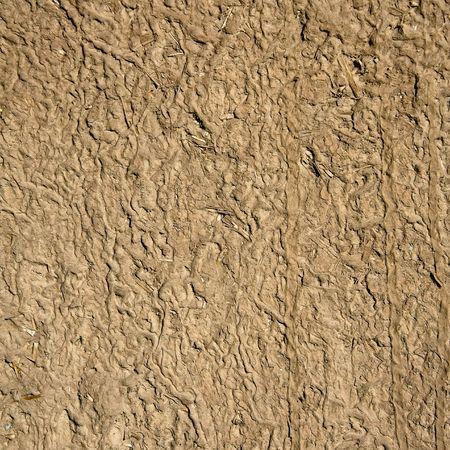 texture of mud & straw Standard-Bild