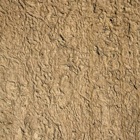 texture of mud & straw Stock Photo